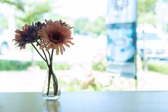 Beautiful artificial flower in small glass vase Royalty Free Stock Photos