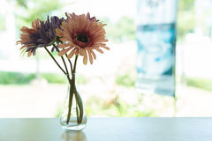 Beautiful artificial flower in small glass vase Royalty Free Stock Photography
