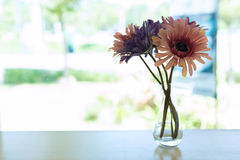 Beautiful artificial flower in small glass vase Stock Photography