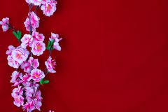 Beautiful flowers on a red background stock image