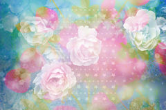 Beautiful artistic background with romantic pink roses Royalty Free Stock Photography