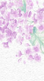 Beautiful artistic flower painting. Impressionist flower oil painting of lilacs in detail Stock Image