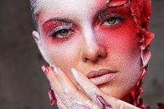 Beautiful, artistic makeup Royalty Free Stock Images