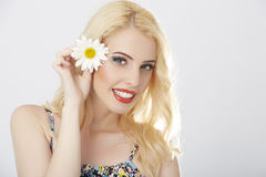 Beautiful as a daisy Stock Images