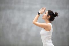Beautiful Ashtanga Vinyasa Yoga stock images