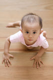 Beautiful asian baby girl while crawling up a stair. Royalty Free Stock Photo