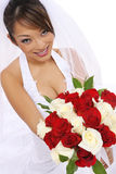 Beautiful Asian bride  Stock Photos