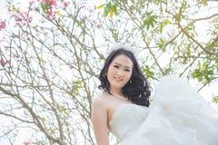 Beautiful asian bride in park Stock Image