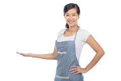 Beautiful Asian cafe owner presenting to copyspace. Portrait of young beautiful Asian cafe owner isolated over white background presenting to copyspace Royalty Free Stock Images