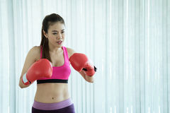 Beautiful Asian fitness boxing woman in pink. With red boxing Gloves on white background. copy space Royalty Free Stock Images