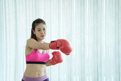 Beautiful Asian fitness boxing woman in pink. With red boxing Gloves on white background. copy space Royalty Free Stock Photography