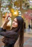 Beautiful Asian girl royalty free stock images