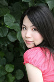 Beautiful Asian girl looking at viewer Royalty Free Stock Photo