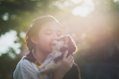 Beautiful asian girl playing with siberian husky puppy in the pa. Rk under sunlight Royalty Free Stock Photos