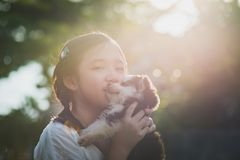 Beautiful asian girl playing with siberian husky puppy in the pa. Rk under sunlight Royalty Free Stock Image