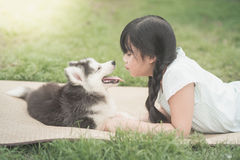 Beautiful asian girl playing with siberian husky puppy Royalty Free Stock Images