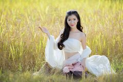 Beautiful asian girl  in the rice field. Stock Images