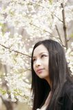 Beautiful Asian girl in spring Stock Image
