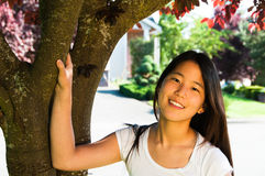 Beautiful Asian Teenage Girl. Portrait of beautiful young smiling Asian American woman framed by trunk and branches of a cherry tree Royalty Free Stock Photos