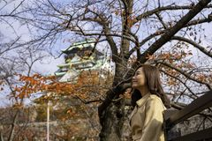 Beautiful asian woman in the autumn garden with Osaka castle in background stock photo