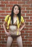 Beautiful Asian woman in a bikini Stock Images