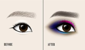 Beautiful Asian Woman Eye and Brow. Before and after make-up. Vector illustration. Beautiful Asian Woman Eye and Brow. Before and after make-up. Vector Royalty Free Stock Photo
