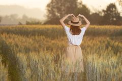 Free Beautiful Asian Woman Having Fun At Barley Field In Summer At Sunset Time Stock Photos - 140448953