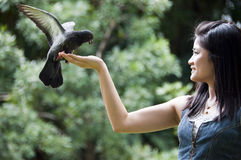 Beautiful asian woman with pigeon. Stock Images