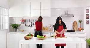 Asian woman teaching daughter. Beautiful Asian woman in red shirt and black apron teaching her daughter how to arrange things for decoration and cooking in stock video footage