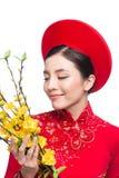 A beautiful Asian woman on traditional festival costume Ao Dai holding Hoa Mai tree Ochna Integerrima flower. Tet holiday. Lunar New Year stock photo