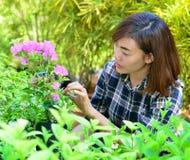 Beautiful asian women in flowers garden stock photo