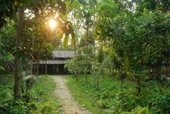 A beautiful Assam type house