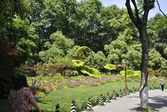 Landscape from West Lake Park in Hangzhou. Beautiful assorted garden from West Lake Park of Hangzhou in China on 3rd may 2018 royalty free stock image