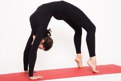 Beautiful athletic girl in black suit doing yoga. chakrasana - bridge pose. Isolated on white background. Royalty Free Stock Images