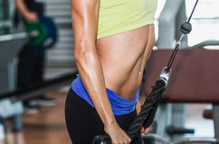 Beautiful athletic sporty young girl working out Royalty Free Stock Photos