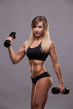 Beautiful athletic woman pumping muscles with dumbbells, isolated on grey background with copyspace.  Stock Photography