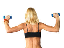 Beautiful athletic woman working with two dumbbells Stock Photography