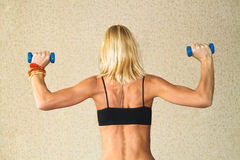 Beautiful athletic woman working with two dumbbells Stock Images