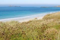 Beautiful atlantic beach Royalty Free Stock Images