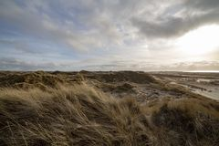 Beautiful atmosphere of the island of Amrum. Beautiful evening atmosphere of the island of Amrum. Impressive dunes in back light with light cloudy sky. The sun stock photos