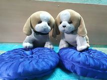 Beautiful attractive soft toys two lovely puppies royalty free stock image