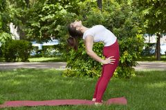 Beautiful attractive young woman stretching exercising in the park royalty free stock images