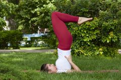 Beautiful attractive young woman stretching exercising in the park stock photo