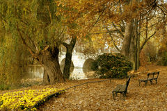 Beautiful autum city landscape Royalty Free Stock Image