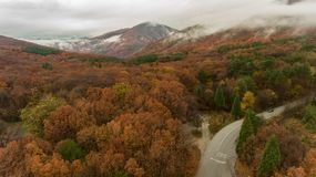 Beautiful autumn from above. Drone flight over a forest in the late autumn vith a view of snowy tops, Bulgaria royalty free stock photography