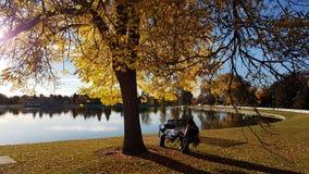 Beautiful autumn afternoon. Denver, Colorado Royalty Free Stock Photo