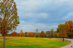 Beautiful autumn alley in the park with colorful trees Stock Photos