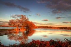 Beautiful Autumn Stock Images
