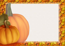 Beautiful Autumn Background Card with Pumpkins in Warm Colors. Royalty Free Stock Photography