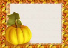 Beautiful Autumn Background Card with Pumpkins in Warm Colors. Stock Photo